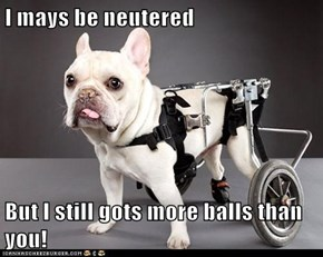 I mays be neutered  But I still gots more balls than you!