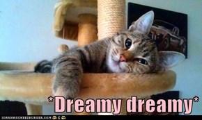 *Dreamy dreamy*