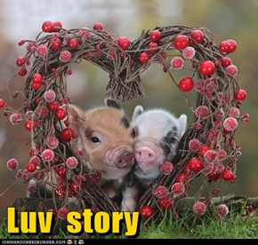 Awww! How Sweet!