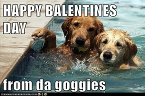 HAPPY BALENTINES DAY  from da goggies