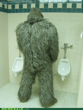 They Finally Cornered the Sasquatch!
