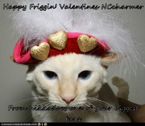 Happy Friggin' Valentines NCcharmer  From nikkadoo, one of your biggest fans