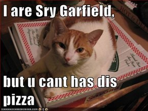 I are Sry Garfield,  but u cant has dis pizza