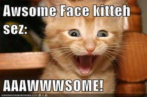 Awsome Face kitteh sez:  AAAWWWSOME!