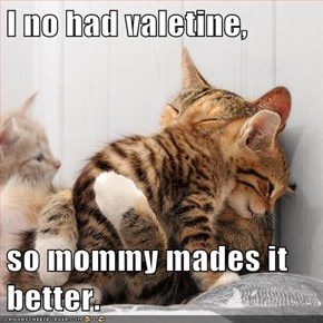 I no had valetine,  so mommy mades it better.