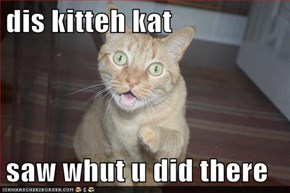 dis kitteh kat  saw whut u did there