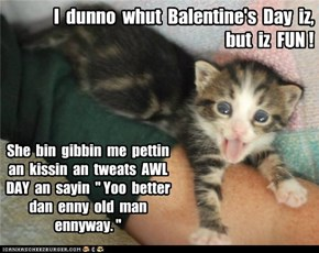 I  dunno  whut  Balentine's  Day  iz,  but  iz  FUN !