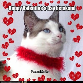 Happy Valentine's Day betskand