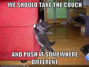 WE SHOULD TAKE THE COUCH
