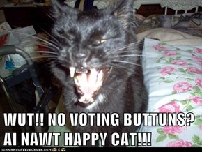 WUT!! NO VOTING BUTTUNS? AI NAWT HAPPY CAT!!!