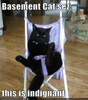 Basement Cat sez:  this is indignant