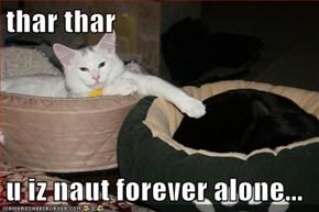 thar thar  u iz naut forever alone...