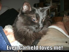 Even Garfield loves me!