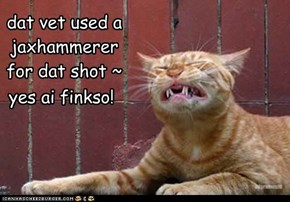 dat vet used ajaxhammererfor dat shot ~