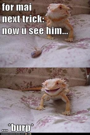 Lizard Magic is Best Magic