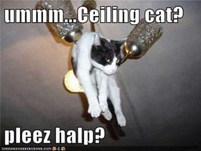 ummm...Ceiling cat?  pleez halp?