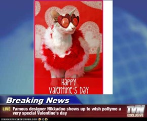 Breaking News - Famous designer Nikkadoo shows up to wish pollyme a very special Valentine's day