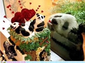 Gimme Gimme Gimme Cake!