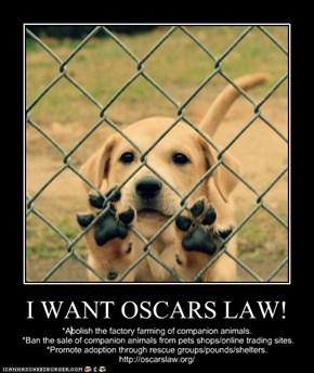I WANT OSCARS LAW!