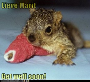 Lieve Marit  Get well soon!