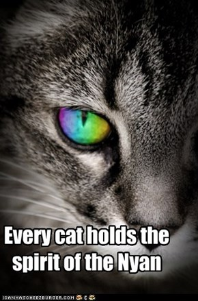 Every cat holds the spirit of the Nyan