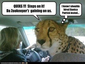QUIXS !!!  Steps on it!  Da Zookeeper'z  gaining on us.