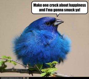 Hey, Aren't You the Blue Bird of, oh Nevermind...