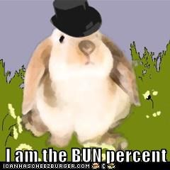 I am the BUN percent