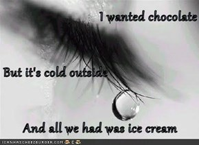 I wanted chocolate But it's cold outside And all we had was ice cream