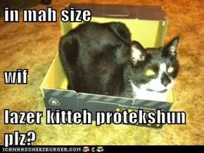 in mah size wif lazer kitteh protekshun plz?