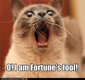 O! I am Fortune's fool!