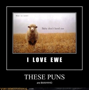 THESE PUNS