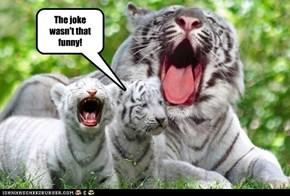 The joke wasn't that funny!