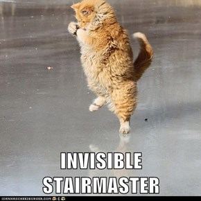 INVISIBLE STAIRMASTER