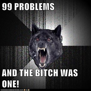 99 PROBLEMS  AND THE BITCH WAS ONE!