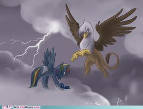 Gilda and Dash fight