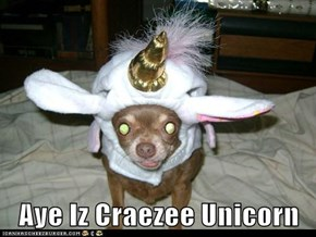 Aye Iz Craezee Unicorn