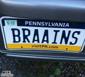 Zombie License Plate WIN