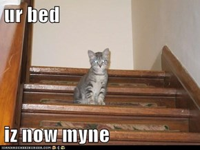 ur bed  iz now myne
