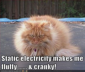 Static electricity makes me fluffy ...... & cranky!
