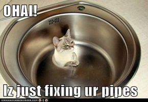 OHAI!  Iz just fixing ur pipes