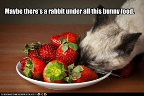 Maybe there's a rabbit under all this bunny food.