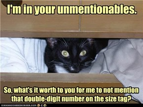 I'm in your unmentionables.