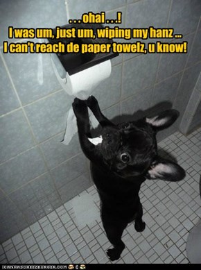 . . . ohai . . .!I was um, just um, wiping my hanz ... I can't reach de paper towelz, u know!