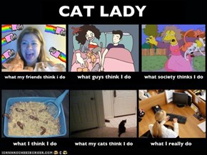 What People Think I Do vs. What I Really Do: Cat Lady