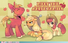 Meet the apple family!