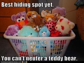 Best hiding spot yet.