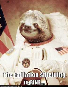 The radiation shielding is FINE...
