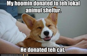 My hoomin donated