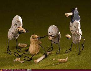 Zombie Nut-pocalypse